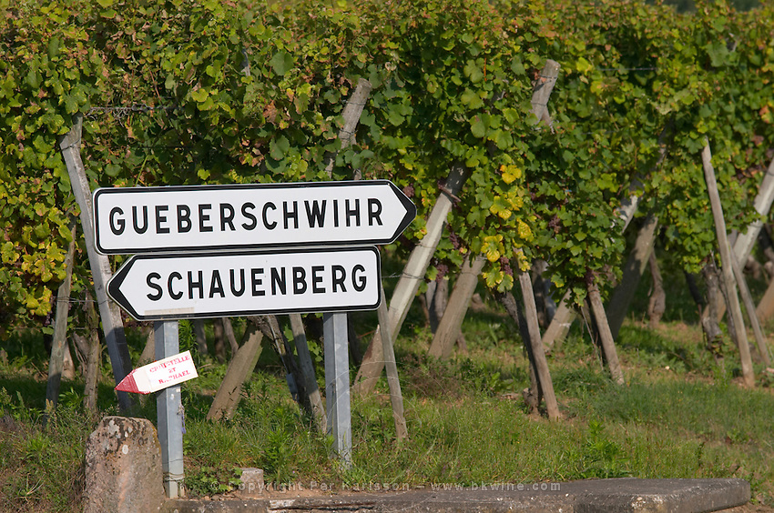 road sign vineyard gueberschwihr schauenberg pfaffenheim alsace france