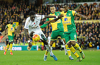Bafetimbi Gomis of Swansea City and Sebastien Bassong of Norwich City during the Barclays Premier League match between Norwich City and Swansea City played at Carrow Road, Norwich on November 7th 2015