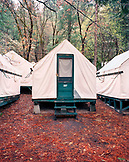USA, California, Yosemite National Park, Currie Village Campground