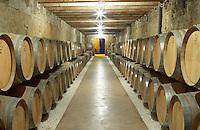 Oak barrel aging and fermentation cellar. Castel del Remei, Costers del Segre, Catalonia, Spain.