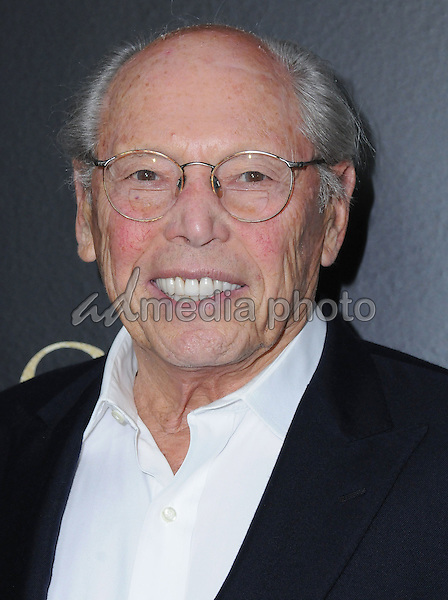 "05 January 2017 - West Hollywood, California - Irwin Winkler. ""Silence"" Los Angeles Premiere held at the Directors Guild of America. Photo Credit: Birdie Thompson/AdMedia"