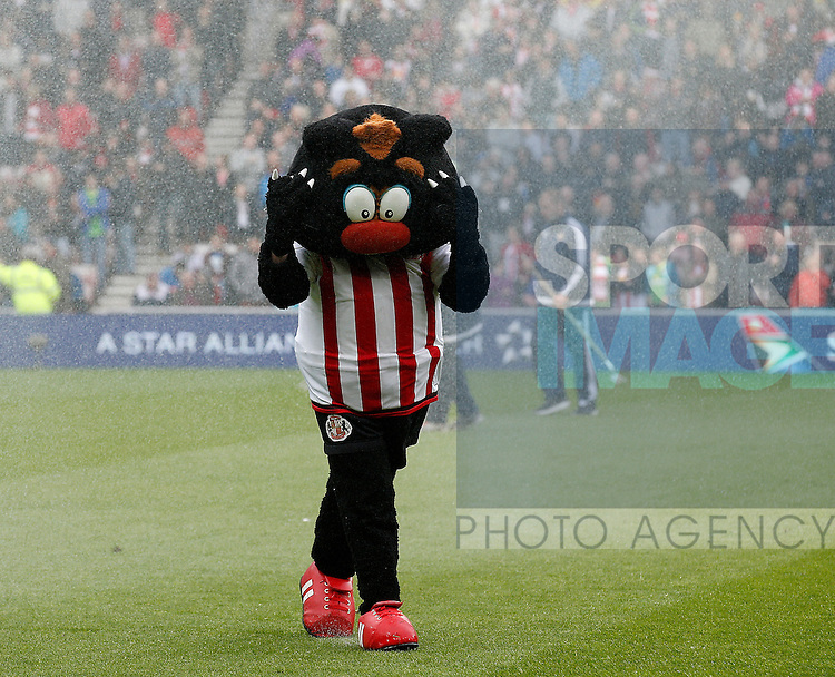 Sunderland mascot gets caught in the sprinkler system during the Barclays Premier League match at the Stadium of Light, Sunderland. Photo credit should read: Simon Bellis/Sportimage