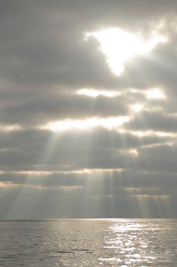Santa Barbara Island, Channel Islands, California; sun rays shine through early morning clouds over the Pacific Ocean , Copyright © Matthew Meier, matthewmeierphoto.com All Rights Reserved