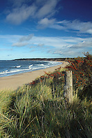 Gullane Bents, Gullane Beach, East Lothian<br /> <br /> Copyright www.scottishhorizons.co.uk/Keith Fergus 2011 All Rights Reserved