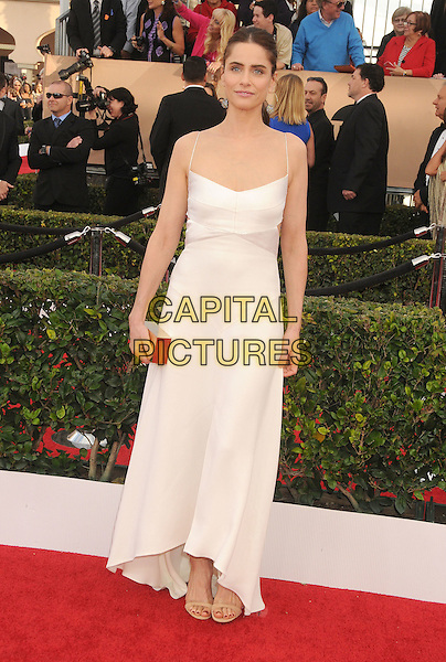 30 January 2016 - Los Angeles, California - Amanda Peet. 22nd Annual Screen Actors Guild Awards held at The Shrine Auditorium.      <br /> CAP/ADM/BP<br /> &copy;BP/ADM/Capital Pictures