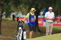 Ryan Chisnall (NZL) on the 11th during Round 2 of the Australian PGA Championship at  RACV Royal Pines Resort, Gold Coast, Queensland, Australia. 20/12/2019.<br /> Picture Thos Caffrey / Golffile.ie<br /> <br /> All photo usage must carry mandatory copyright credit (© Golffile | Thos Caffrey)