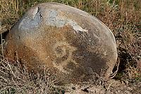 Steinritzung 2.Jt. v.Chr. bei Tokmok, Kirgistan, Asien<br /> engraved stone 2nd Mill. b.C: near Tokmok, Kirgistan, Asia