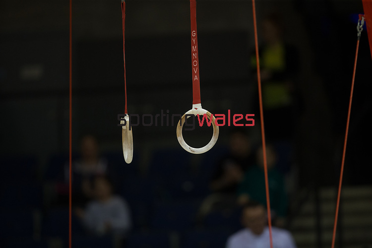 British Gymnastics Championships 2017<br /> The Liverpool Echo Arena<br /> 25.03.17<br /> ©Steve Pope - Sportingwales