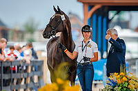 BEL-Isabel Cool presents Aranco V during the Horse Inspection for Dressage. 2018 FEI World Equestrian Games Tryon. Tuesday 11 September. Copyright Photo: Libby Law Photography
