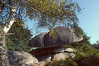 Europe/France/Limousin/23/Creuse/Env Boussac: Les pierres jaunâtres