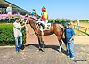 RB Rainbow Dash winning at Delaware Park on 9/7/15