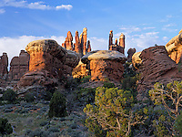 The Needles rock formations in the background with the Butress formations in the foreground in the Needles District of Canyonlands National Park. Utah.