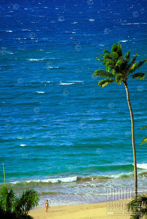 Palm trees and ocean at Wailea Beach, Maui