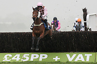 Marodima ridden by Tom O'Brien in jumping action during the Physicool Handicap Chase (In Aid of West Berkshire Mencap) - Horse Racing at Newbury Racecourse, Berkshire