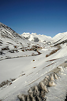 Mountain stream and mountains in the alps - Realp  in the Swiss alps- close to the Furkapass, Oberwald, Switzerland.