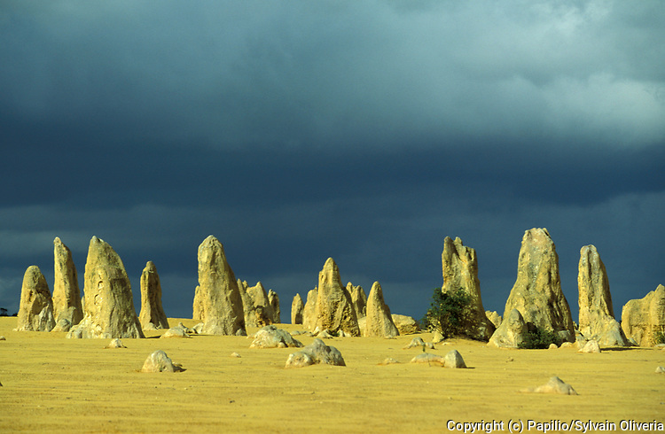 The Pinnacles, Western Australia, limestone formations contained within Nambung National Park, outback