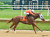 Alabarme winning at Delaware Park on 6/20/15