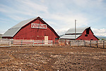 Red barns built in the early 1900s at the sixth-generation run Chandler Ranch Herefords near Baker City, Ore.