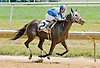 Run Mommy Run winning at Delaware Park on 7/16/12