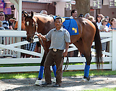 5th - Ziggy the Great - Moreno schools for Travers