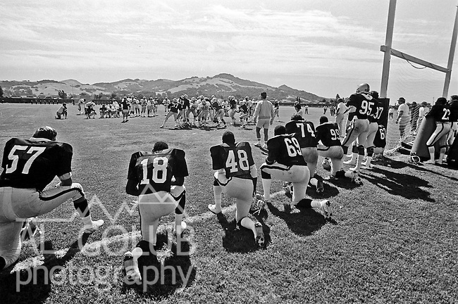 Oakland Raiders training camp August 10, 1982 at El Rancho Tropicana, Santa Rosa, California.   Raiders scrimmage in late afternoon sun.