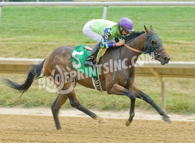 I'm Done winning at Delaware Park on 7/19/12