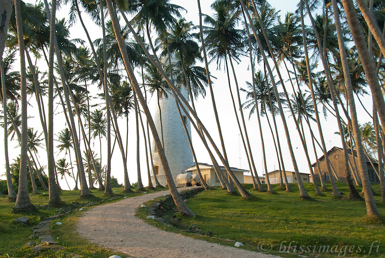Palm trees cool the path to Barberyn (Beruwala) lighthouse Island -near Bentota, Sri Lanka