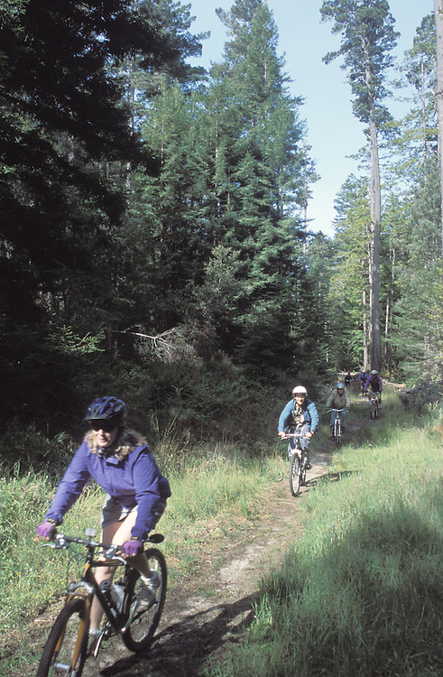 Bikers riding at the Mendocino Woodlands, Mendocino California