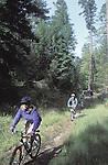 Bikers riding at the Mendocino Woodlands, Mendocino California