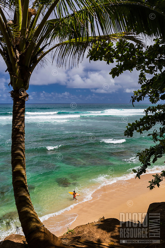 A surfer girl gets ready to paddle out on the north shore of Kaua'i.