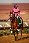AUG 22: Maximum Security, and Jockey Abel Cedill fly away and secure a spot in the Breeders' Cup Classic with a victory in the Grade I Pacific Classic with jockey Abel Cedillo aboard, in Del Mar, California on August 22, 2020. Evers/Eclipse Sportswire/CSM