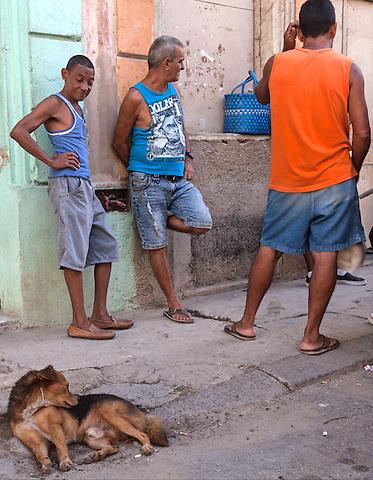 Men and a dog, Centro Habana