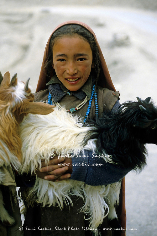 Portrait of a young herder girl on the road to Leh holding two goats in her arms, Ladakh, India.