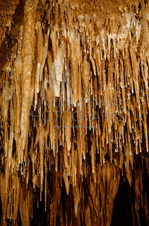 MAMMOTH CAVE NATIONAL PARK<br />