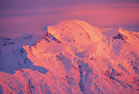 Pink Alpenglow On The North Face Of Mt. Denali Summit, Denali National Park, Alaska