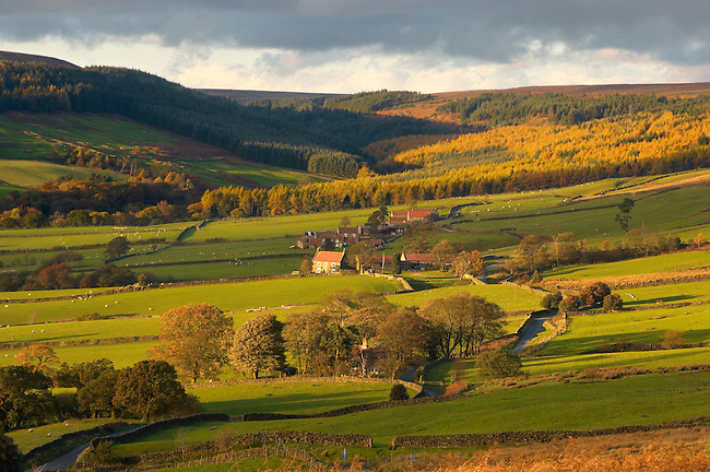 Bransdale at sunset, North Yorkshire Moors National Park, England.
