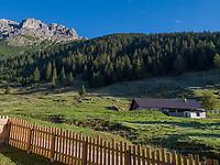 Hochimst Obermarkter Alm, vorderer Plattein der Lechtaler Alpen, Imst, Tirol, &Ouml;sterreich, Europa<br /> Obermarkter Alm,, Hochimst, Imst, Tyrol, Austria, Europe