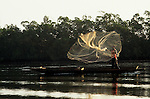 The Gambia. Man throwing a fishing net from a dugout canoe.