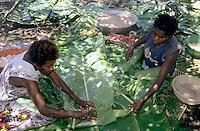 Women preparing traditional laplap dishes, Sulphur Bay Village, Ipekel Ipeukel, Tanna Island, Vanuatu.