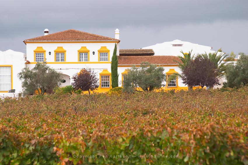 Vineyard. The winery. J Portugal Ramos Vinhos, Estremoz, Alentejo, Portugal
