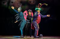 SÃO PAULO, SP 18.04.2019: CIRQUE DU SOLEIL-SP -  O espetáculo OVO, do Cirque Du Soleil, criado e dirigido pela brasileira Deborah Colker, estreiou em São Paulo na noite desta quinta-feira (18) no Ginásio do Ibirapuera, zona sul da capital, onde fica em cartaz até 12 de maio. (Foto: Ale Frata/Codigo19)