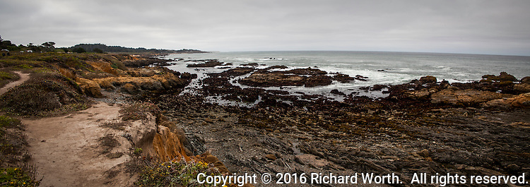 Under an overcast sky, the dirt trail above the rugged and rocky shoreline of Bean Hollow State Beach on the California coast