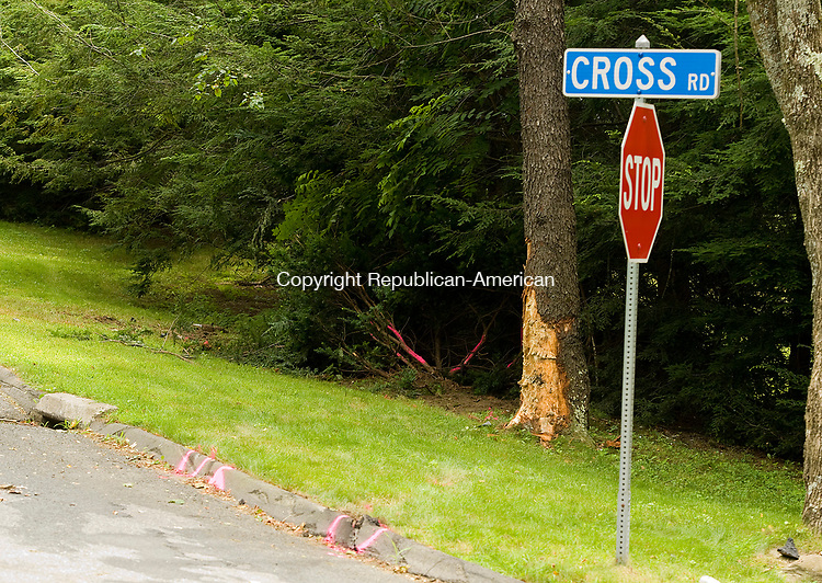 PLYMOUTH, CT-0712917JS03--A 2006 Chevy Cobalt hit a tree at Town Hill Road at Cross Road in Plymouth early Saturday killing a 17-year-old and injuring seven others. <br /> Jim Shannon Republican-American
