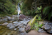 Found on the eastern side of Lake Kaniere is the Dorothy falls, Westland District, West Coast, South Island, New Zealand.