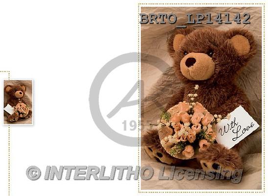 Alfredo, BIRTHDAY, paintings+++++,BRTOLP14142,#birthday# ,teddy bears