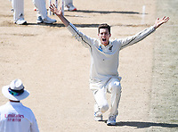 25th November 2019; Mt Maunganui, New Zealand;  Mitchell Santner appeals International test match day 5 of 1st test, New Zealand versus England;  at Bay Oval, Mt Maunganui, New Zealand.