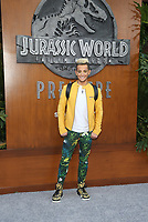 LOS ANGELES, CA - JUNE 12: Frankie J. Grande, at Jurassic World: Fallen Kingdom Premiere at Walt Disney Concert Hall, Los Angeles Music Center in Los Angeles, California on June 12, 2018. Credit: Faye Sadou/MediaPunch