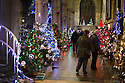 04/12/14<br /> <br /> The country's largest Christmas tree festival opened last night in Melton Mowbray St Mary's Church, Melton Mowbray, Leicestershire. Visitors can view the 905 trees which range from full size to miniature trees every day until 3pm on Tuesday, when the businesses, clubs and people in the town who made the trees will collect them - many of them being walked through the town to be relocated to new sites for the rest of Christmas.<br /> <br /> All the trees are themed, often with funny names. There's an interactive electronic tree, a money tree (photographed) and many trees are decorated with poppies to commemorate the 100 year anniversary of WW1.  <br /> <br /> Hannah Nutter's tree, named 'Pantree', is decorated with pants and knickers.<br /> <br /> <br /> ***ANY UK EDITORIAL PRINT USE WILL ATTRACT A MINIMUM FEE OF &pound;130. THIS IS STRICTLY A MINIMUM. USUAL SPACE-RATES WILL APPLY TO IMAGES THAT WOULD NORMALLY ATTRACT A HIGHER FEE . PRICE FOR WEB USE WILL BE NEGOTIATED SEPARATELY***<br /> <br /> <br /> All Rights Reserved - F Stop Press. www.fstoppress.com. Tel: +44 (0)1335 300098
