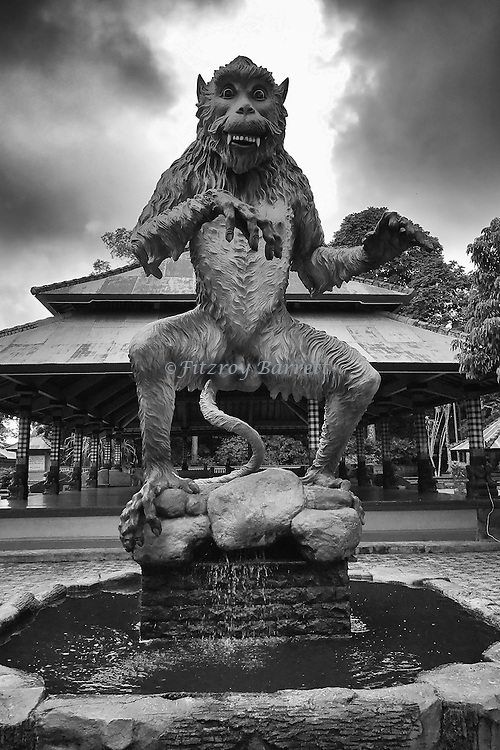 Not sure if i should run in fear as i entered the Alas Kedaton Monkey Forest his photo was taken during one of my photo walk about in Sanur Bali Indonesia November 6, 2016. ©Fitzroy Barrett