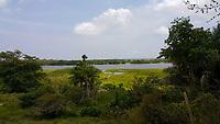 Fazenda Taperinha no lago Maicá.<br /> Santarém, Pará, Brasil.<br /> Foto Flávio Nassar